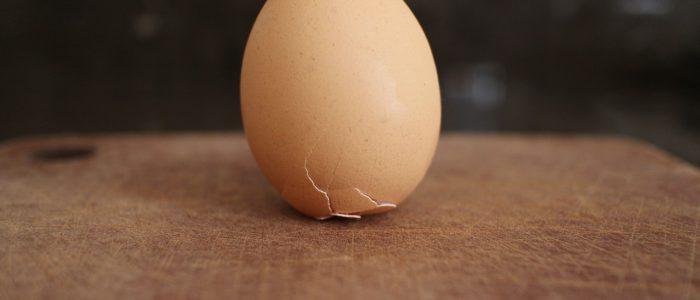 brunelleschi and the egg