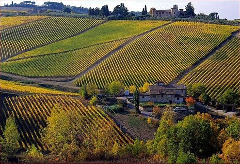 Best Tuscany wine tours